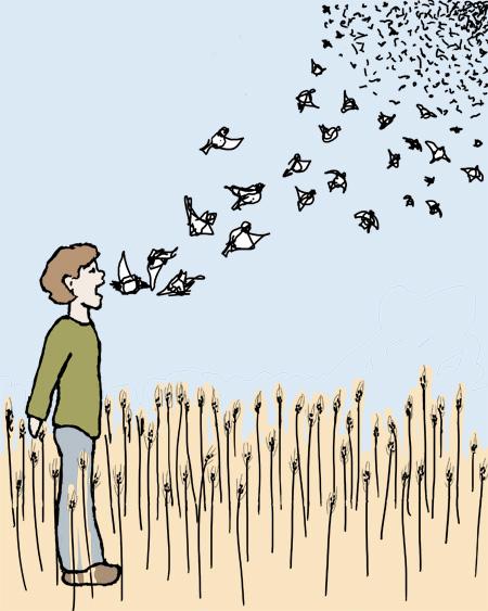wheatbirds-blog