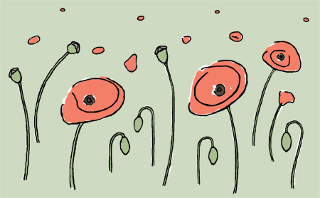 poppies blog
