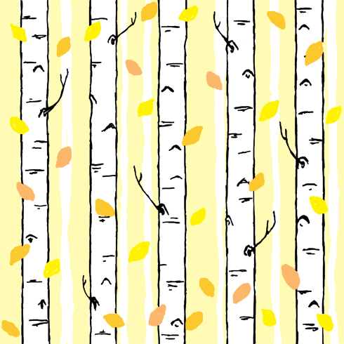 birch stripe blog