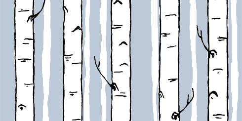birch stripe winter blog